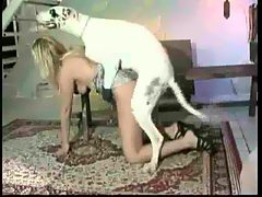 Wife fucks great dane