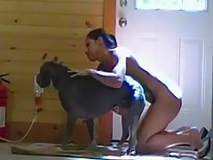 Girl first time having animal sex with dog   K9 PORN - Dogs porn